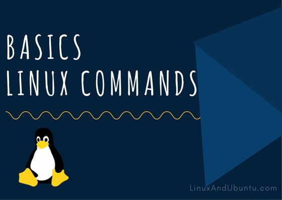 Check Linux file permissions with ls